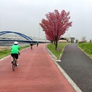 サイクリング入社式 2